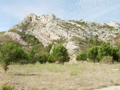 Étude pour l'ouverture des parcs départementaux des Bouches-du-Rhône