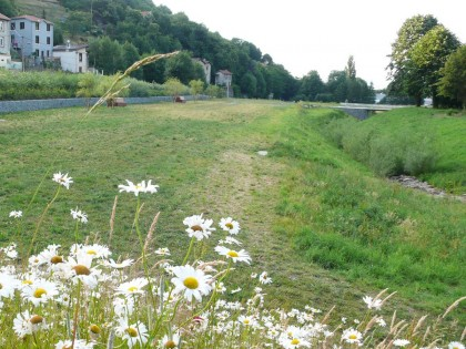 Parc public du Val-Furet Saint-Etienne (Loire)