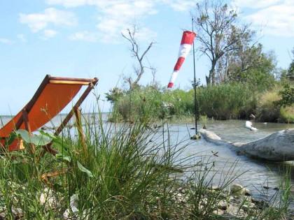 L'odyssée des îlones – Exposition itinérante le long du Rhône