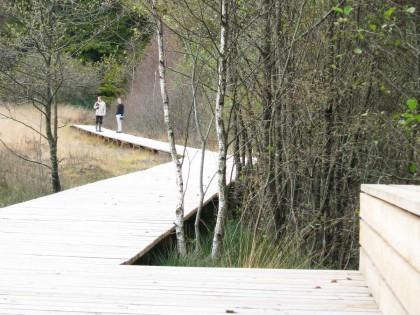 ENS des sources de l'Yonne – Parcours d'interprétation (Nièvre)